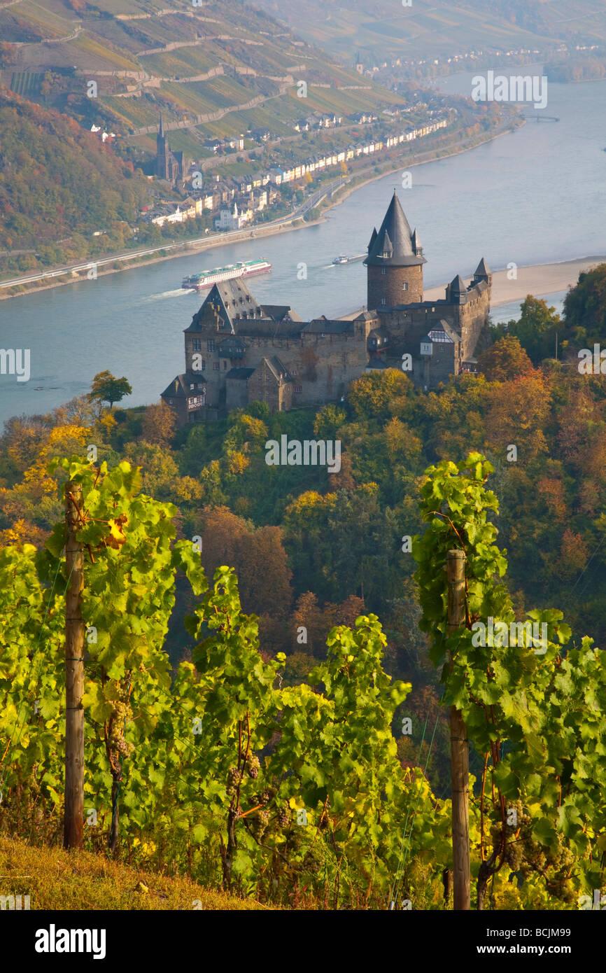 Burg Stahleck & Vineyard, Bacharach, Rhine Valley, Germany, RF - Stock Image