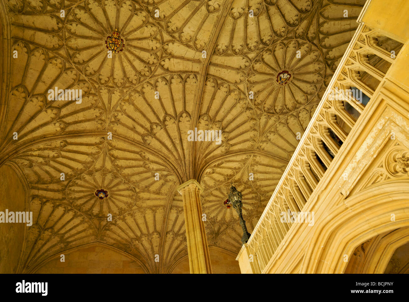 The elaborate fan-vaulted ceiling on the staircase at Christ Church college Oxford UK - Stock Image
