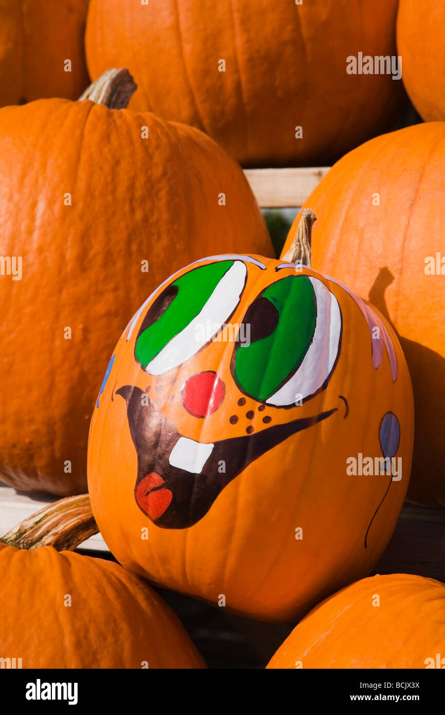 Pumpkin with painted face - Stock Image