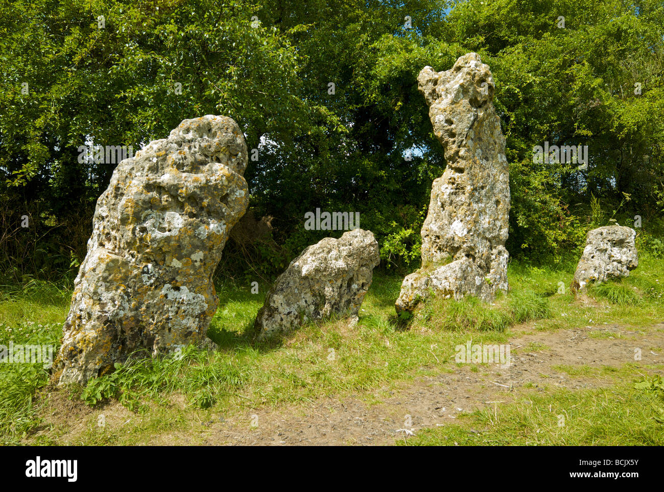 The Rollright Stones a small neolithic stone circle with 77 heavily weathered limestones in Oxfordshire UK called - Stock Image