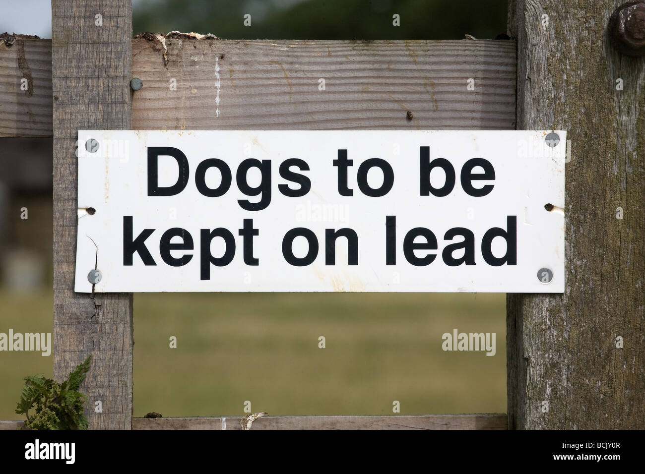 Dogs To Be Kept On A Lead Sign On A Public Footpath - Stock Image