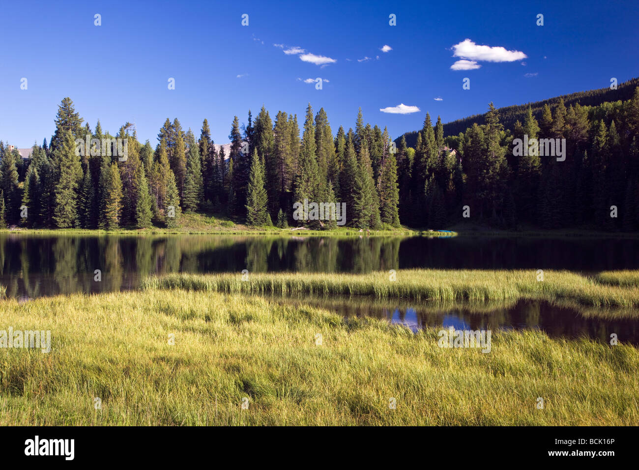 Nicholson Lake off of Slate River Road northwest of Crested Butte Colorado USA - Stock Image