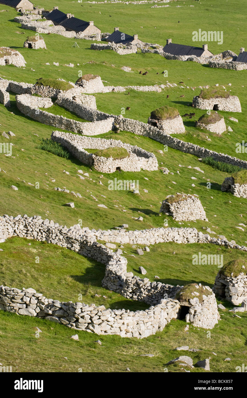 Historic village with stone cleits, Soay Sheep and corrals, Village Bay, Hirta, St. Kilda, Scotland, WORLD HERITAGE - Stock Image