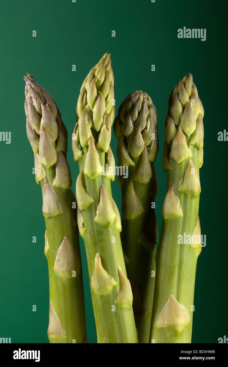 Close up of four asparagus stalks - Stock Image