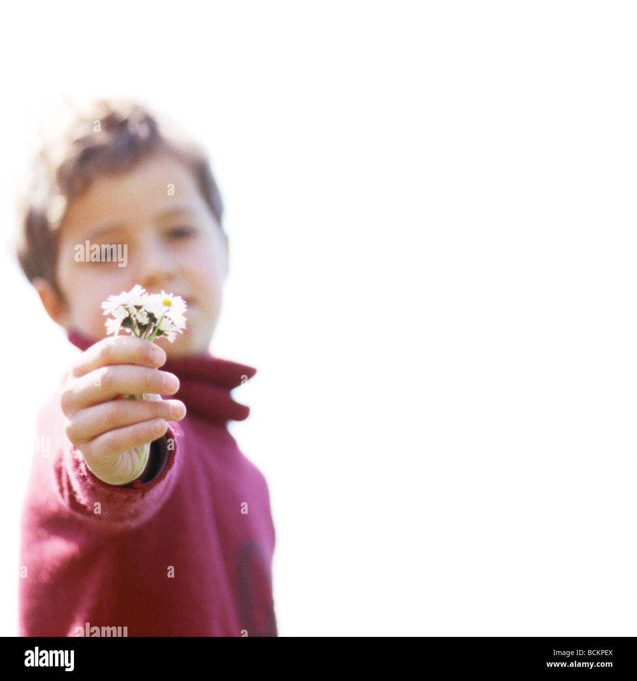 Child holding out flowers - Stock Image