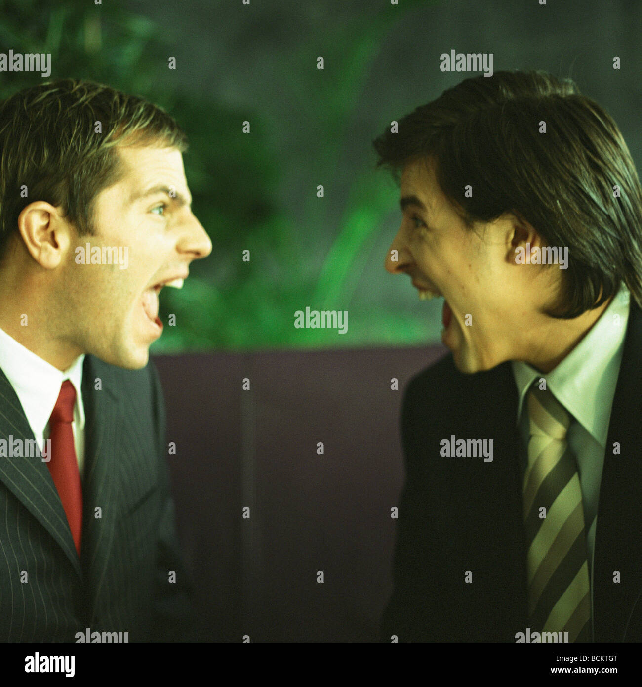 Businessmen yelling face to face - Stock Image