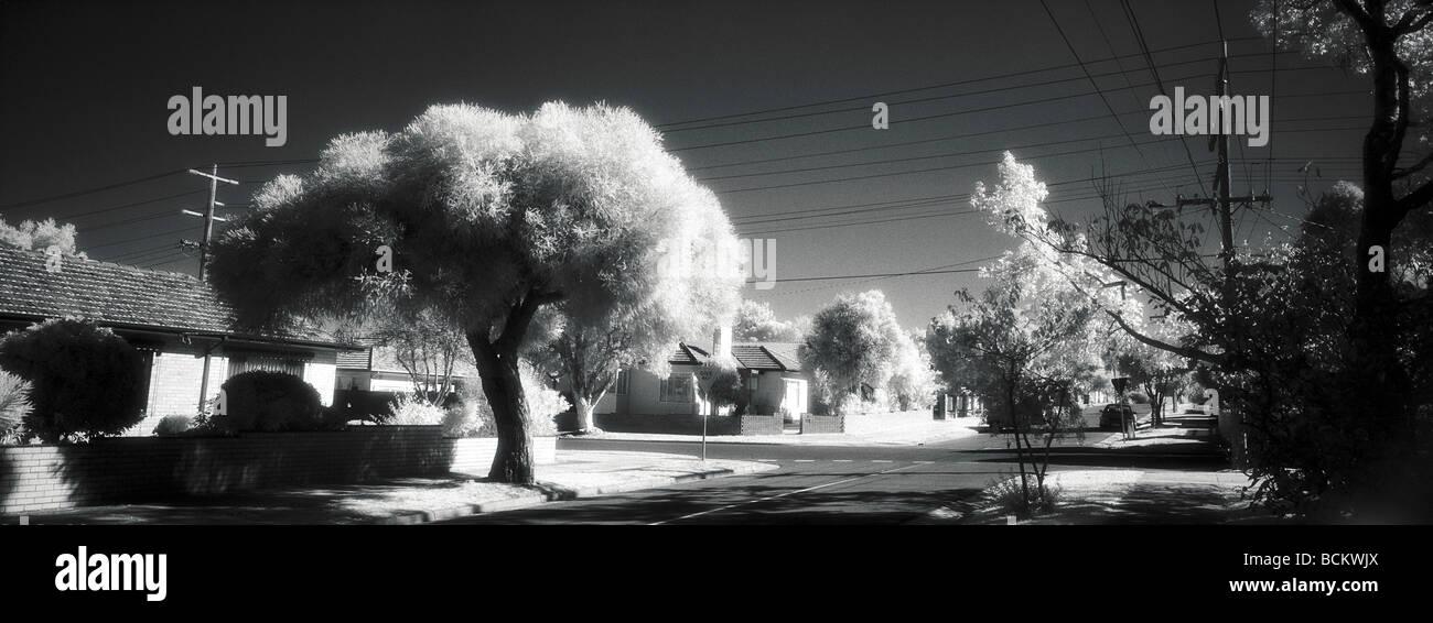 Suburban landscape, b&w - Stock Image