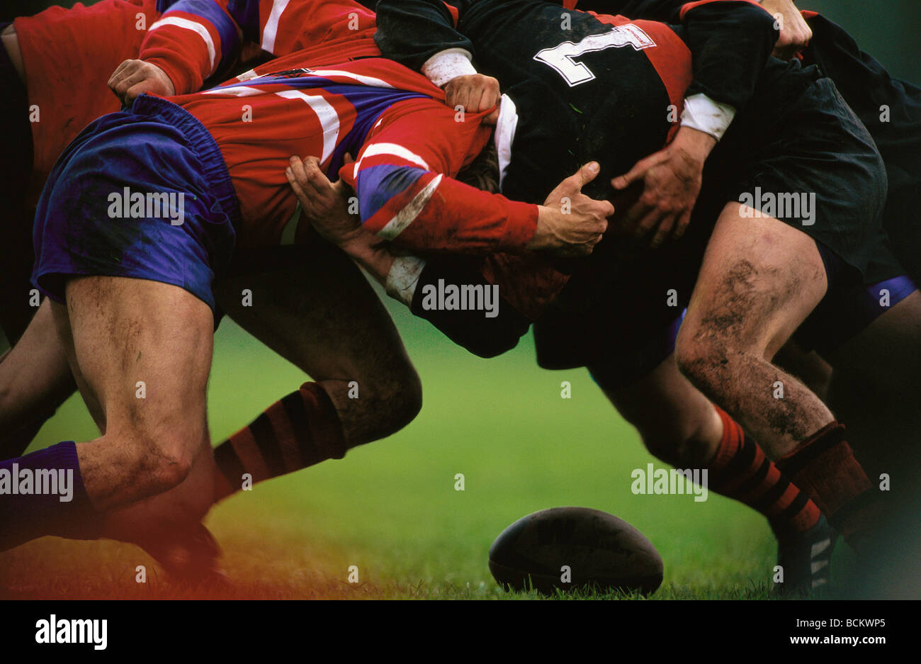Rugby scrum - Stock Image