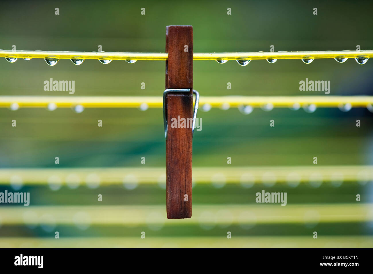 Wooden clothes peg on a wet washing line with waterdrops - Stock Image