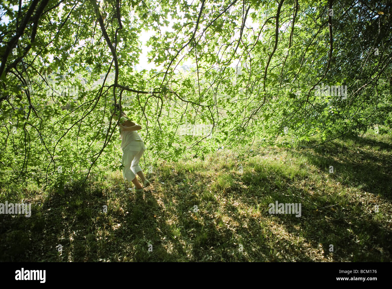 Girl looking through branches, rear view, full length - Stock Image