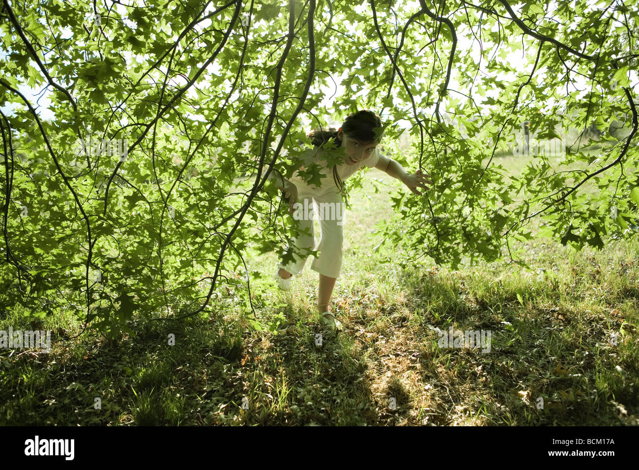 Girl looking through branches, full length - Stock Image