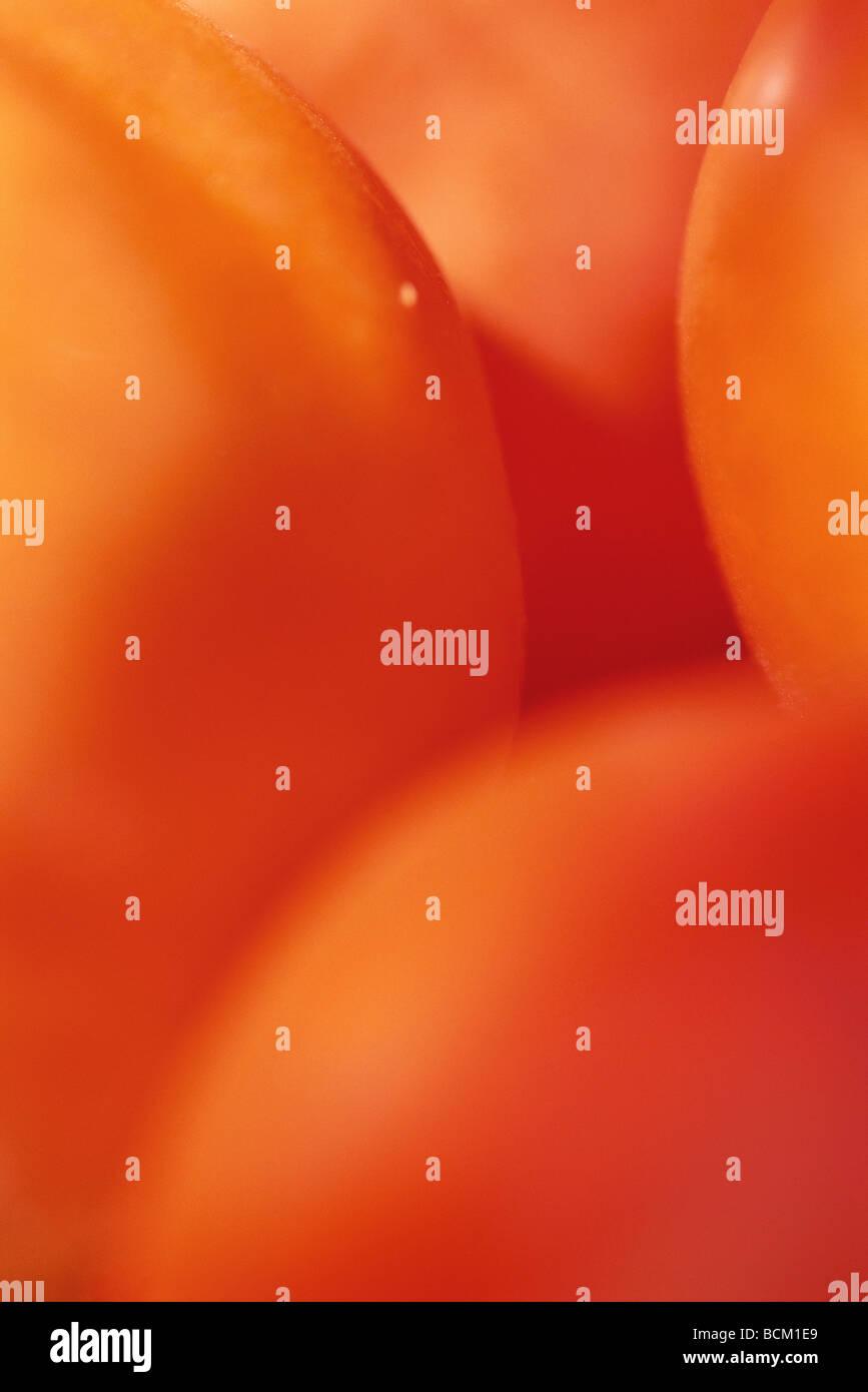 Tomatoes, extreme close-up, full frame - Stock Image