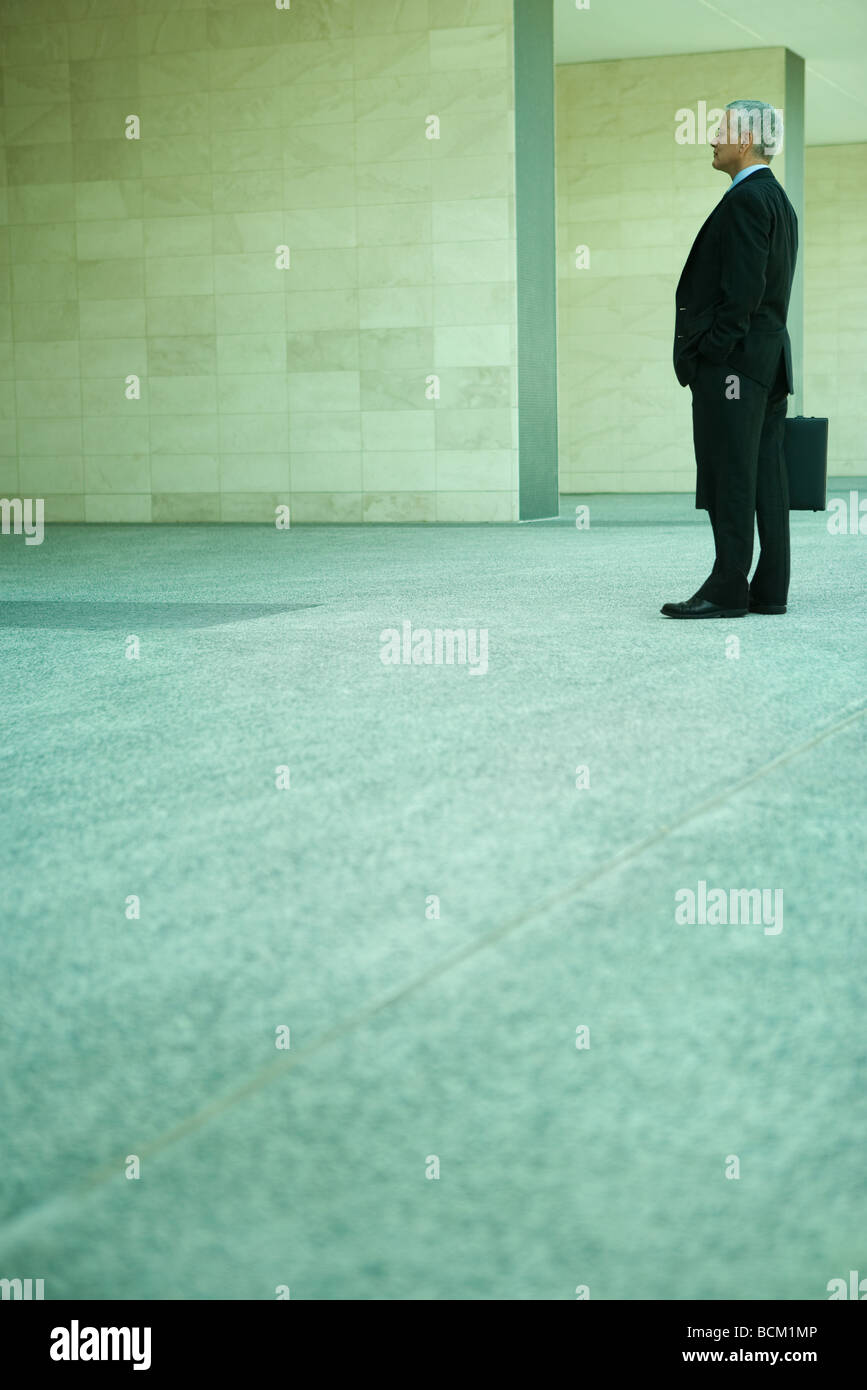 Businessman standing, holding briefcase, full length, side view - Stock Image