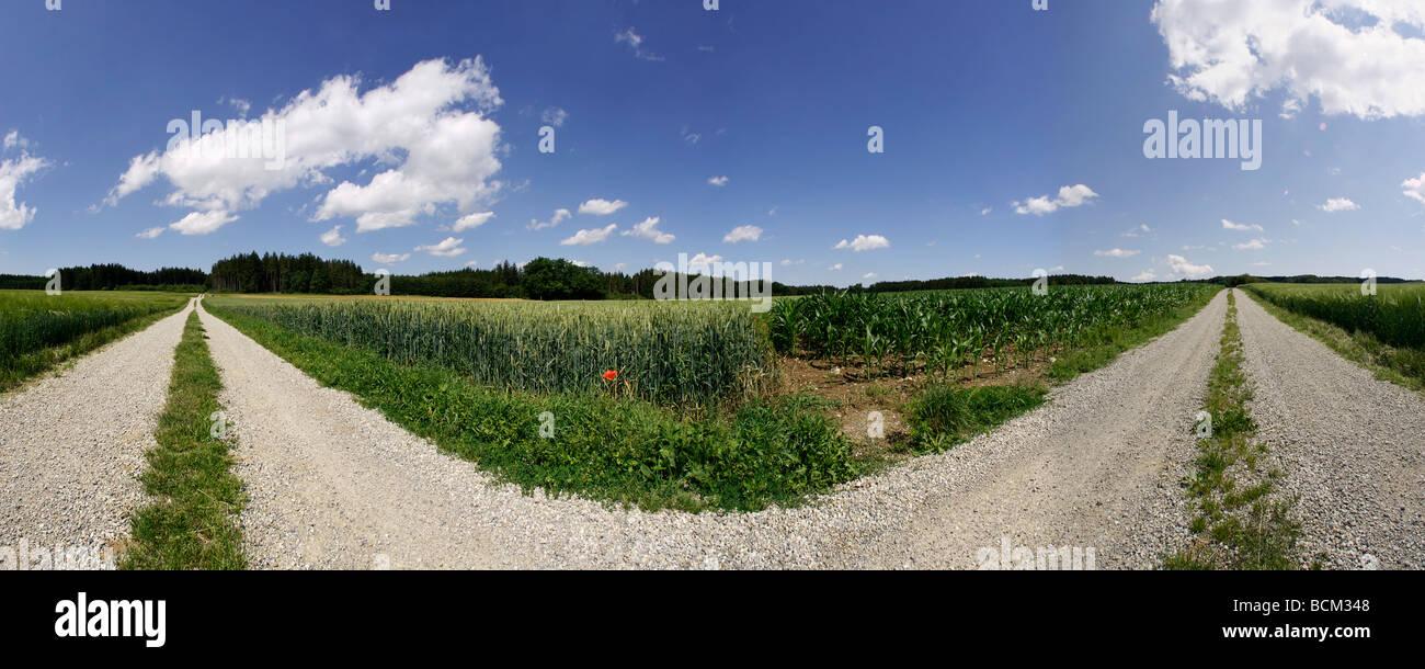 Forked gravel road in rural landscape - Stock Image