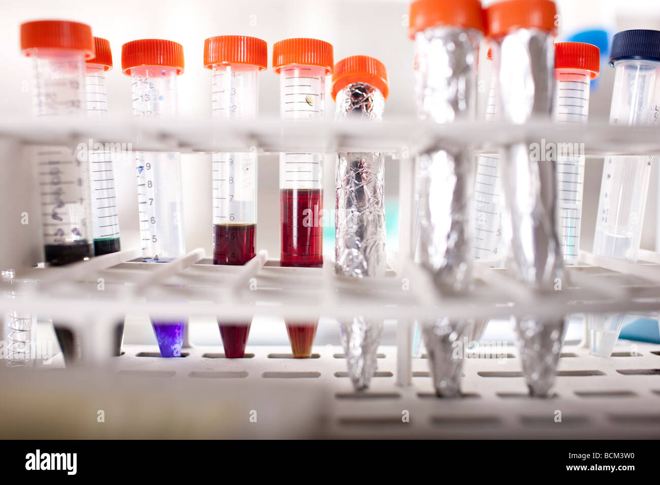Laboratory test tubes - Stock Image