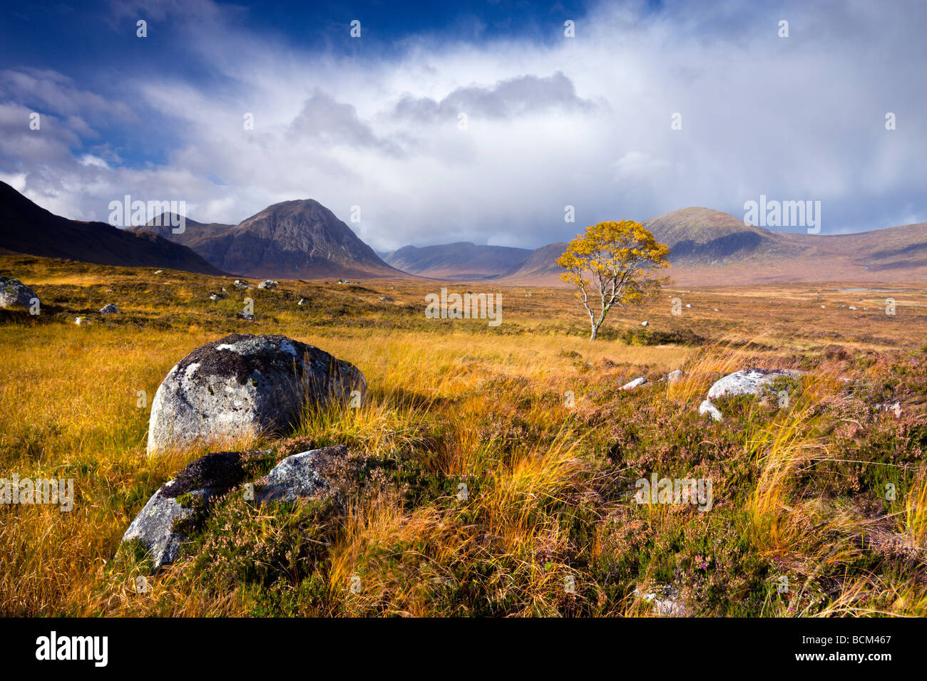 Autumn colours on Rannoch Moor Highlands Scotland October 2008 - Stock Image