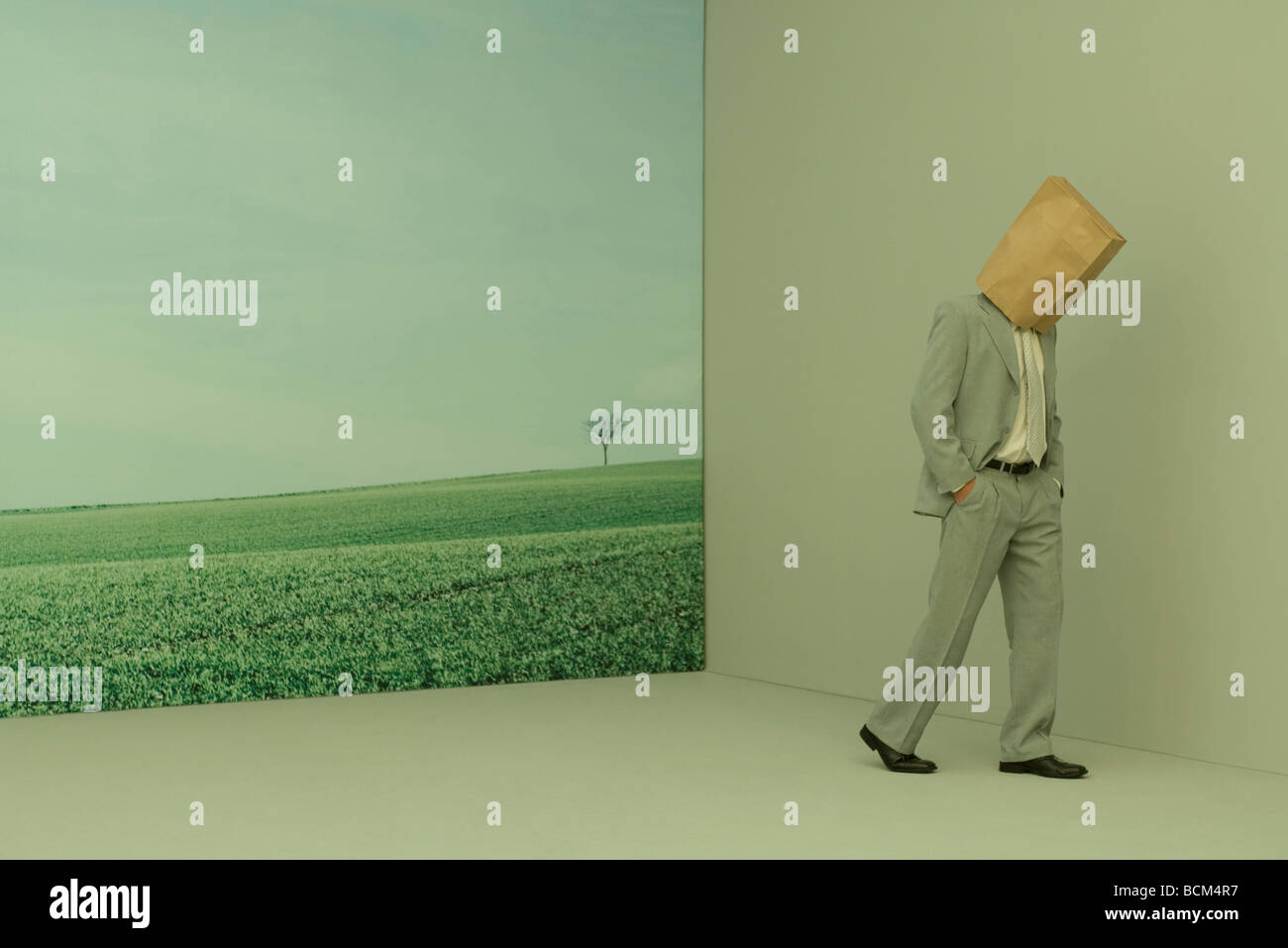 Man wearing paper bag over head, walking away from rural landscape, hands in pockets - Stock Image