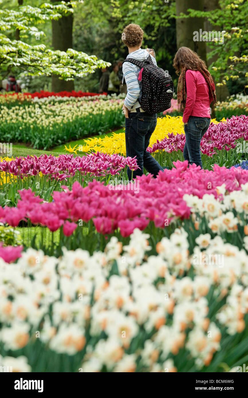Tourists walking in Keukenhof Garden, Lisse, South Holland, Netherlands. - Stock Image