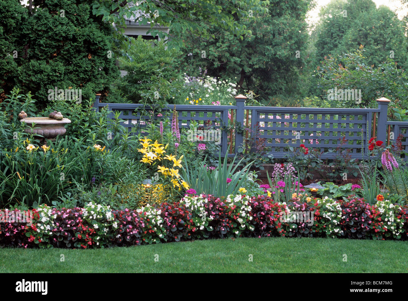 Border Garden Along Fence Includes Begonias Daylilies Iris And Stock Photo Alamy