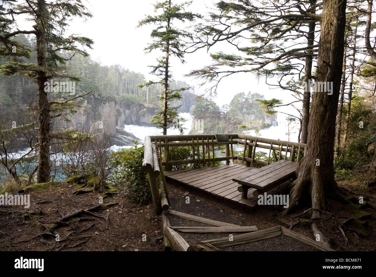 Overlook on the Cape Flattery Trail Olympic Coast National Marine Sanctuary Washington State - Stock Image