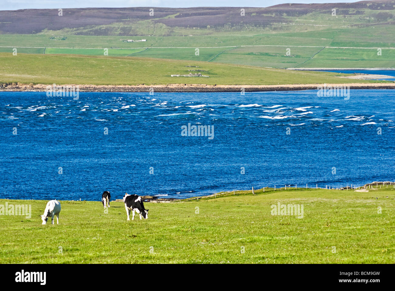 The tide races through Eynhallow Sound between Orkney Mainland and Rousay in Scotland on a sunny June day. - Stock Image