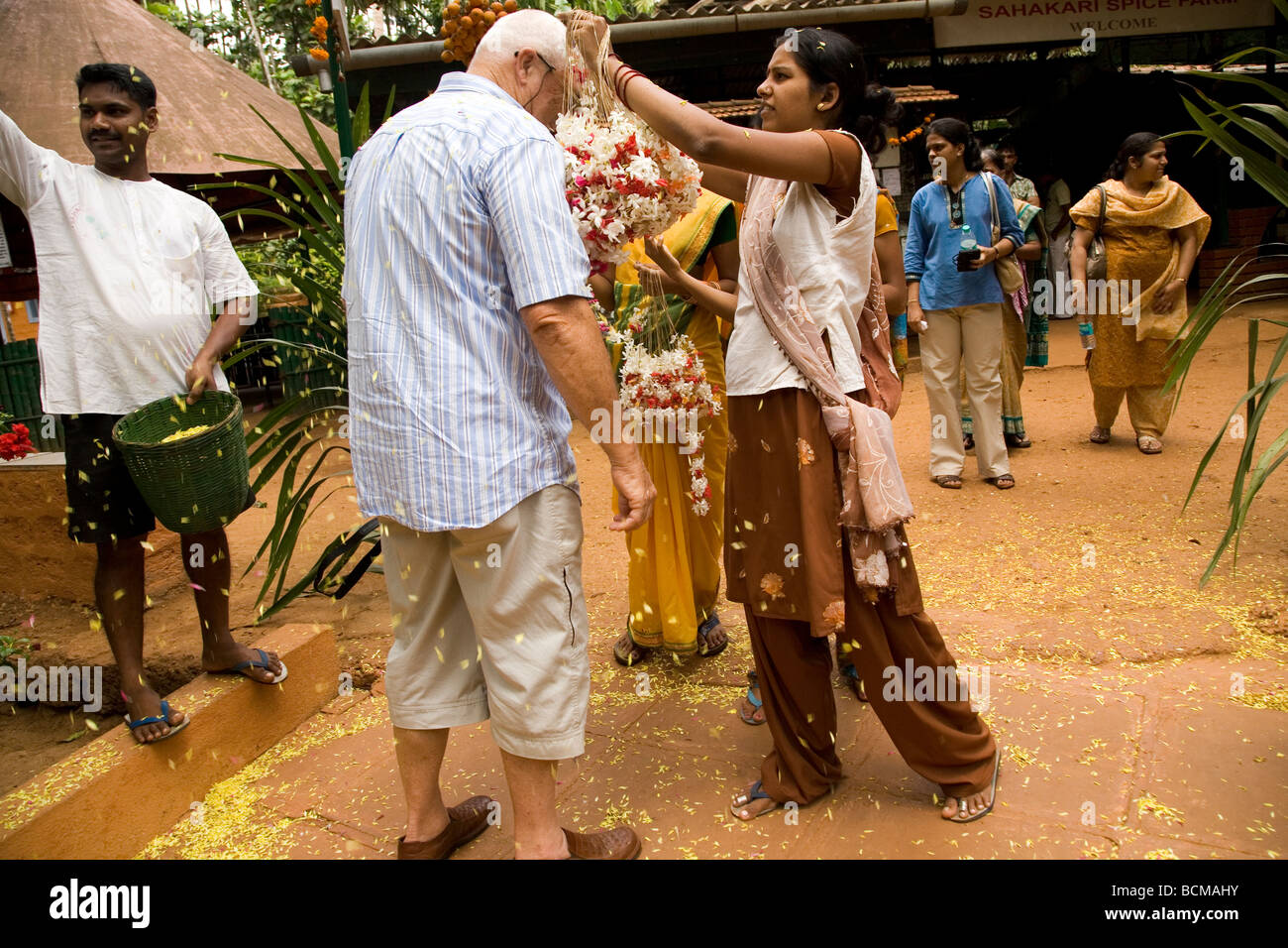 A western tourist is welcomed to Goa, India, with a garland of flowers. Petals are thrown over the arriving tourists. - Stock Image