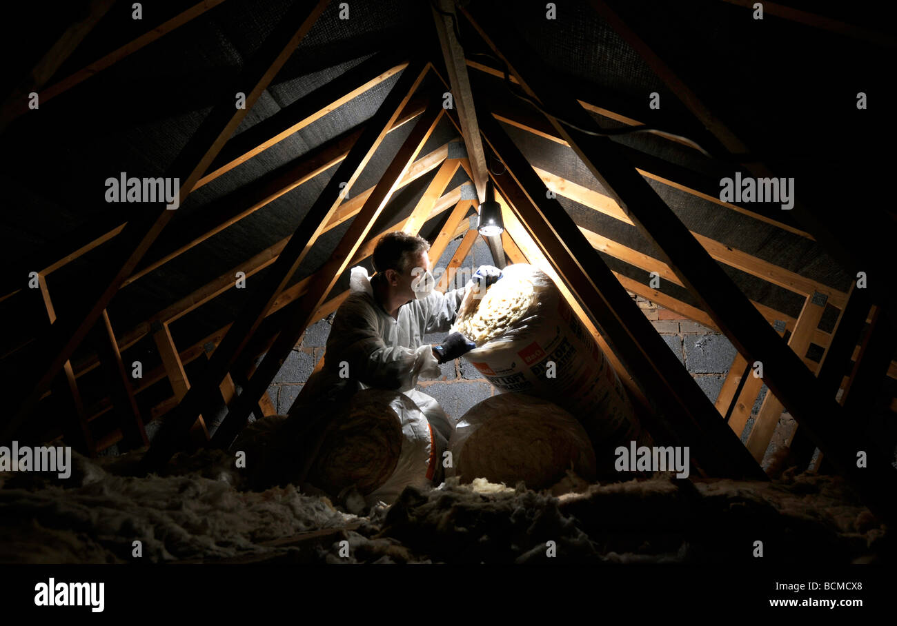MAN INSULATING A DOMESTIC HOUSEHOLD LOFT WITH  ROLLS OF LOFT INSULATION UK - Stock Image