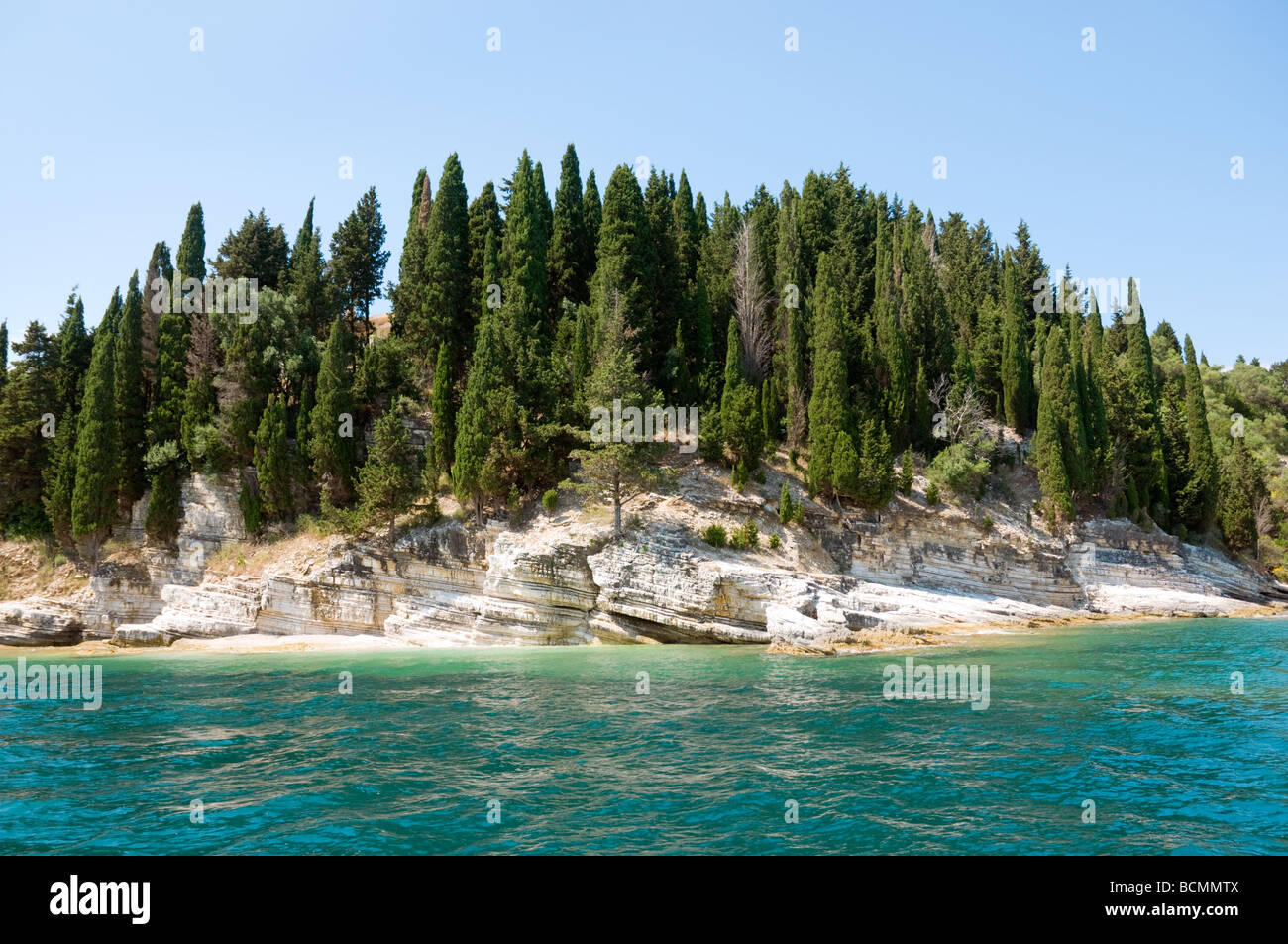 Cypress trees on the NE coast Corfu - Stock Image