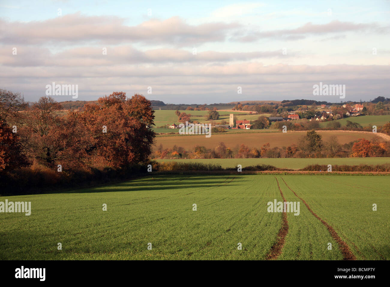 General View of the village of Hawkedon in Autumn in Suffolk East Anglia - Stock Image