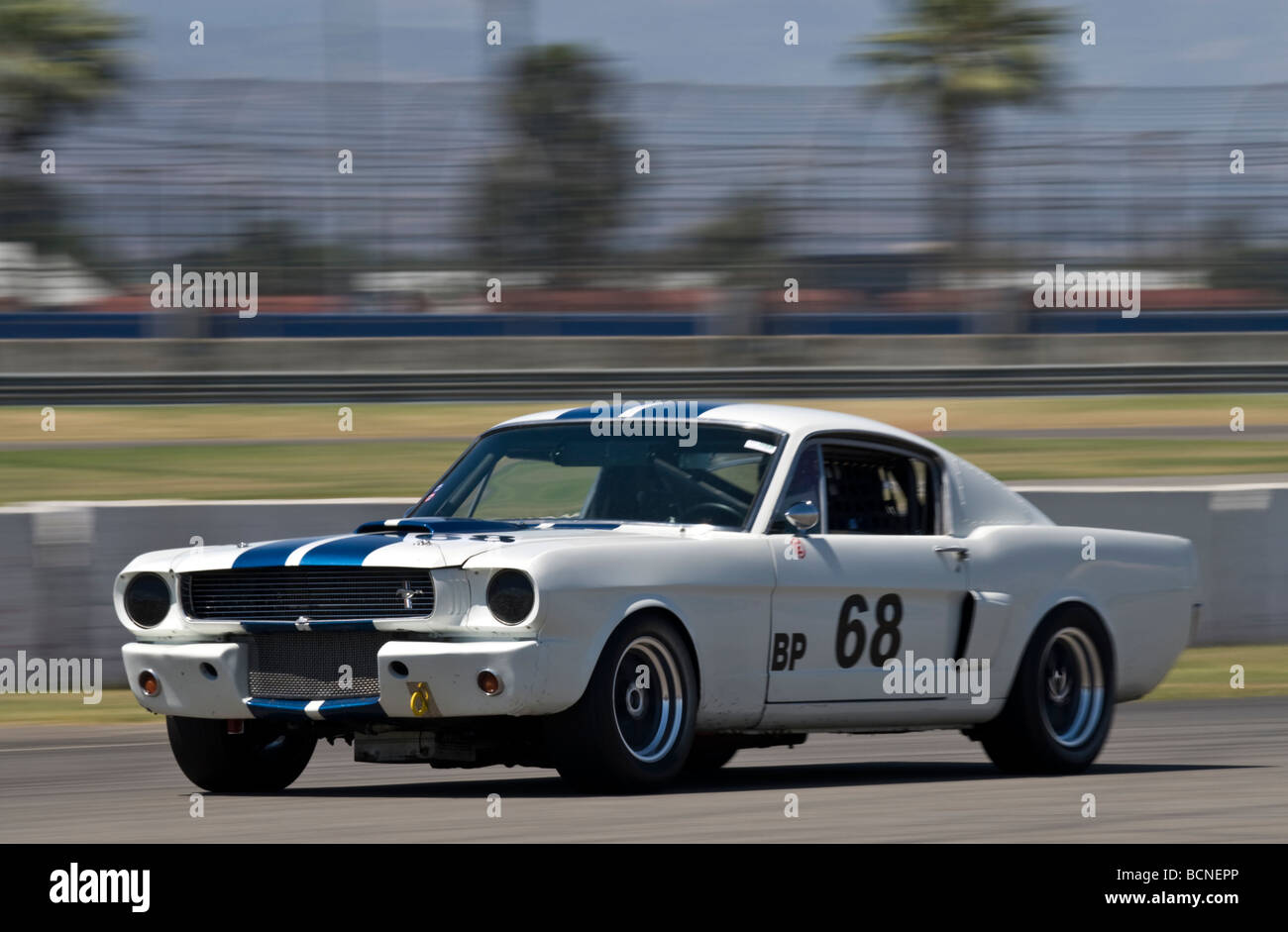 A 1966 Ford Mustang GT at a vintage racing event