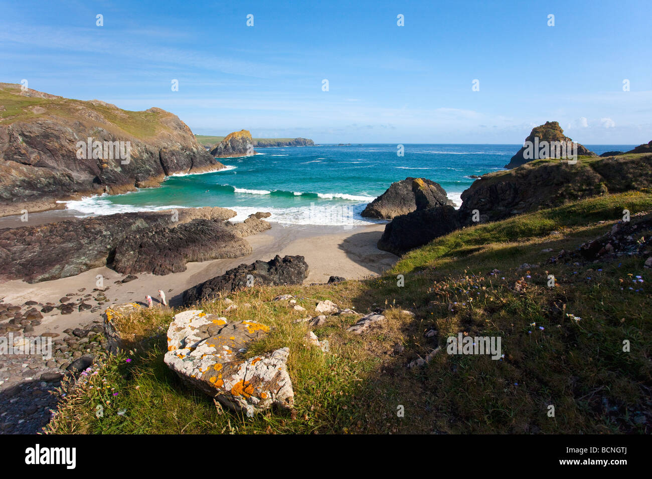 Kynance Cove the Lizard on sunny summers day blue sky sunshine Cornwall England UK GB United Kingdom Great Britain - Stock Image