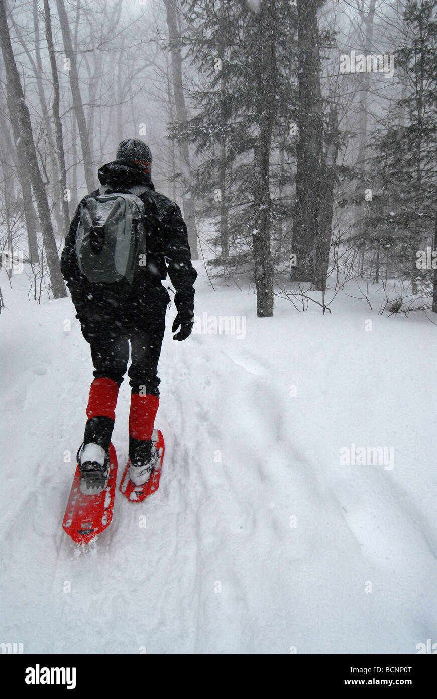 Man Walking In Snow Storm With Snowshoes Stock Photo
