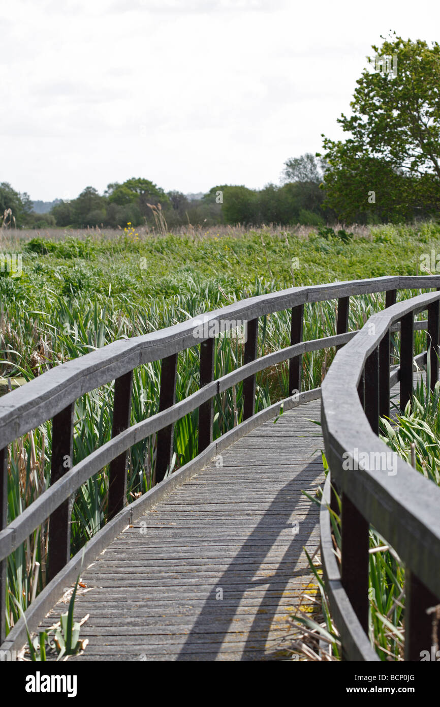 board walk made from recycled plastics - Stock Image