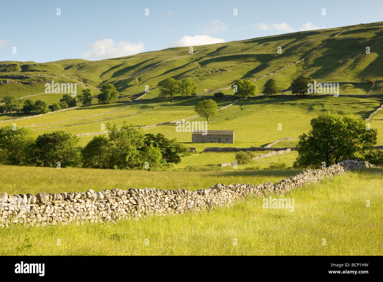Summer in Wharfedale, Yorkshire Dales National Park, England - Stock Image