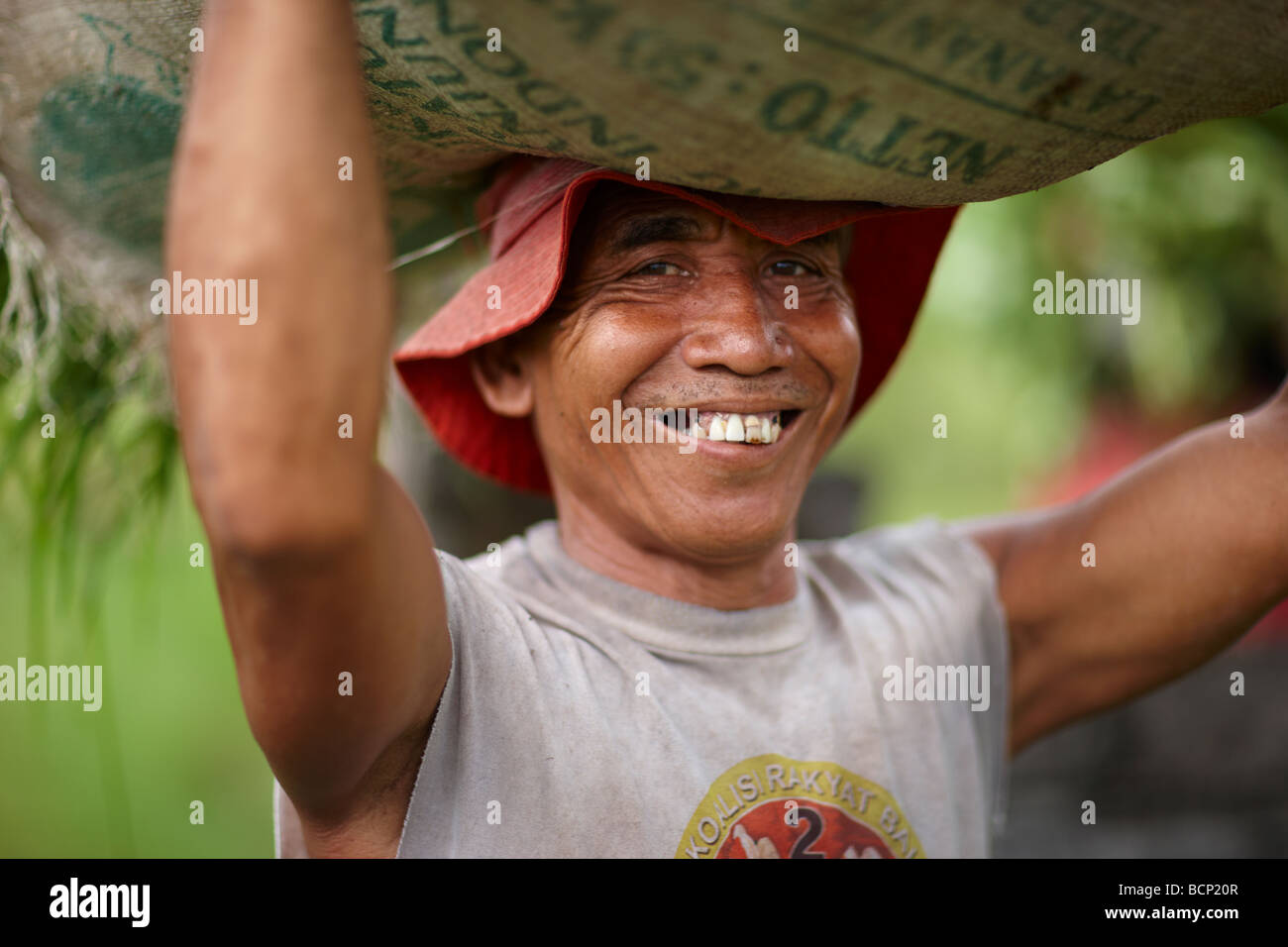 a farmer carrying a sack of rice on his head, nr Tirtagangga, Bali, Indonesia - Stock Image
