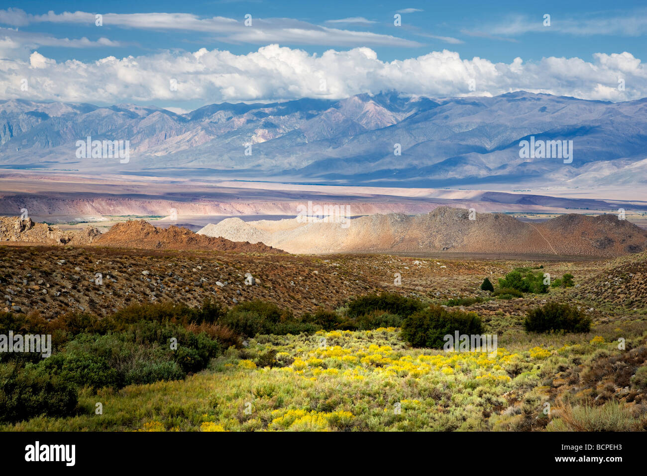 Owens Valley  from Bishop Canyon area California - Stock Image