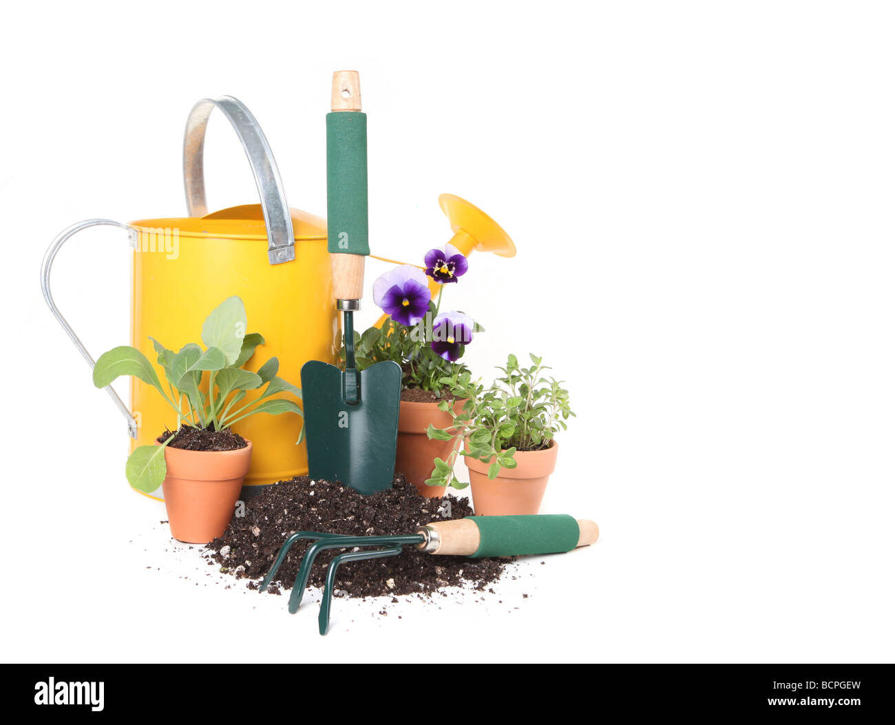 Planting New Flowers and Herbs in Celebration of Spring Time Stock Photo