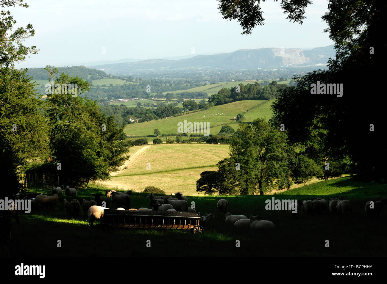 View from near Nantmawr towards Llanymynech Hill Shropshire Borders - Stock Image