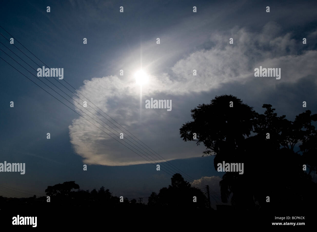 underexposed cloud and sun with tree and power cables - Stock Image