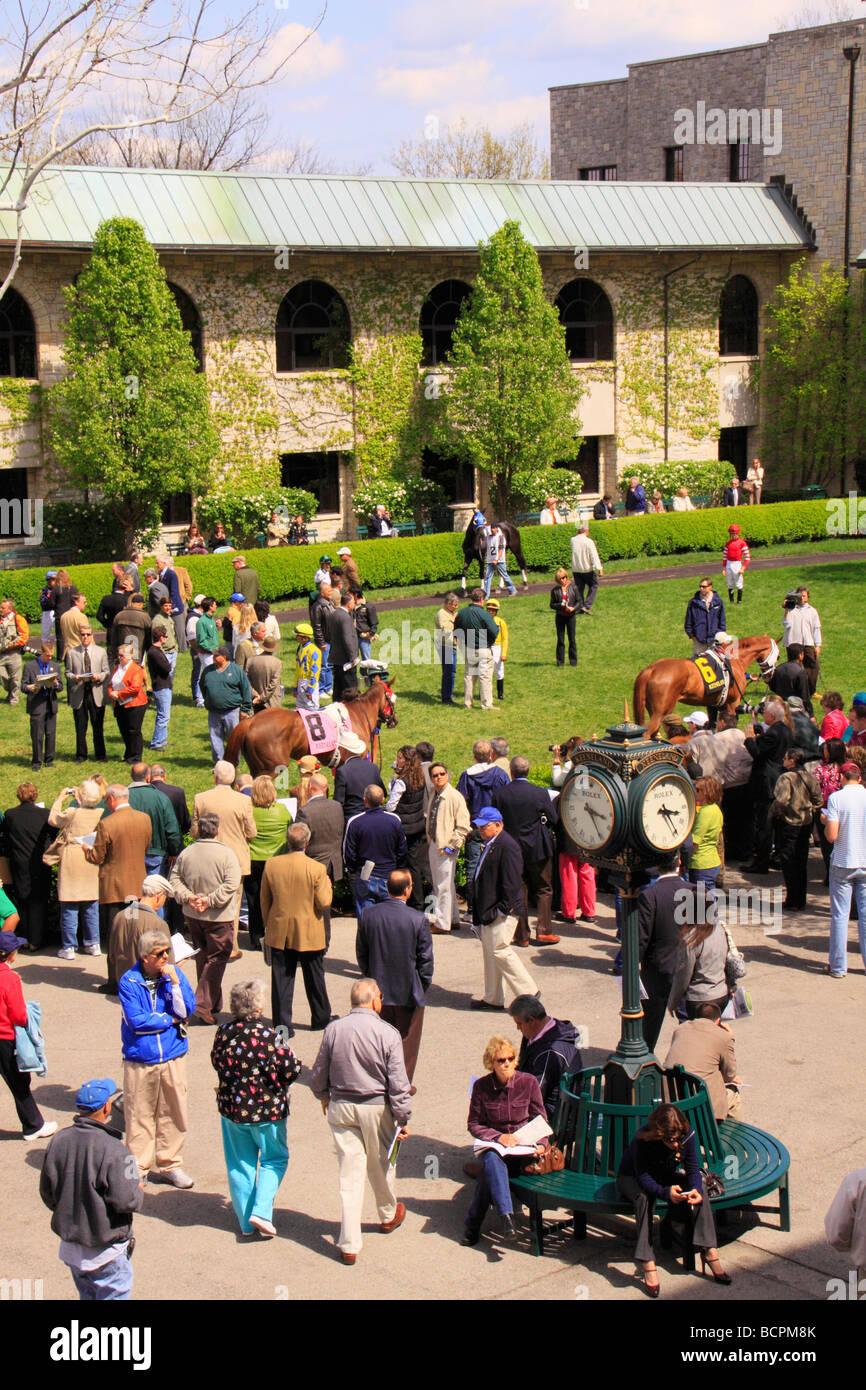 Spectators watch thoroughbreds walk through the paddock prior to a race Keeneland Race Course Lexington Kentucky - Stock Image