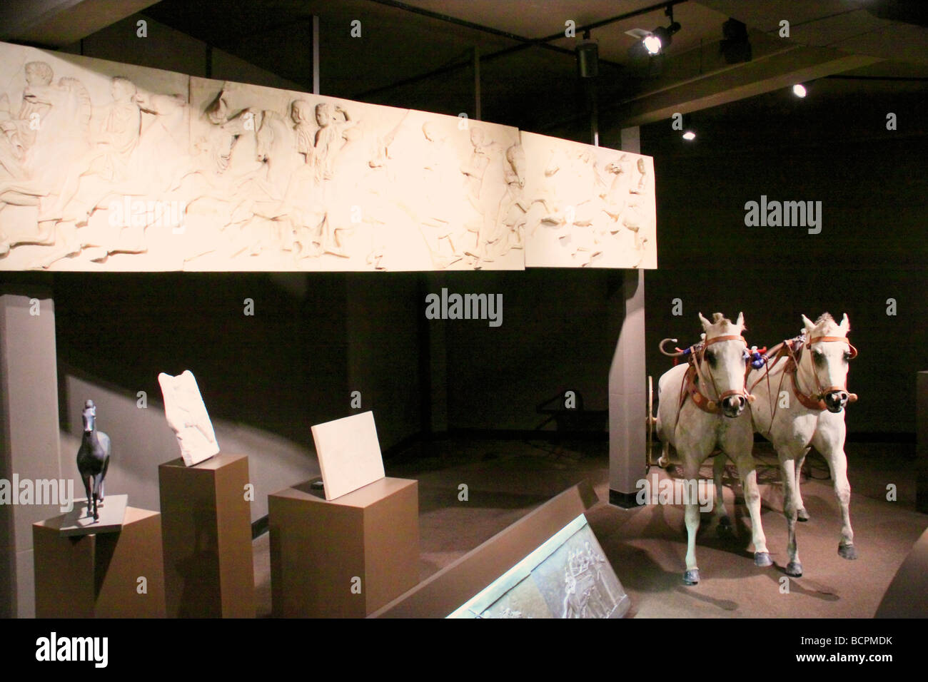 Exhibit in the International Museum of the Horse Kentucky Horse Park Lexington Kentucky - Stock Image