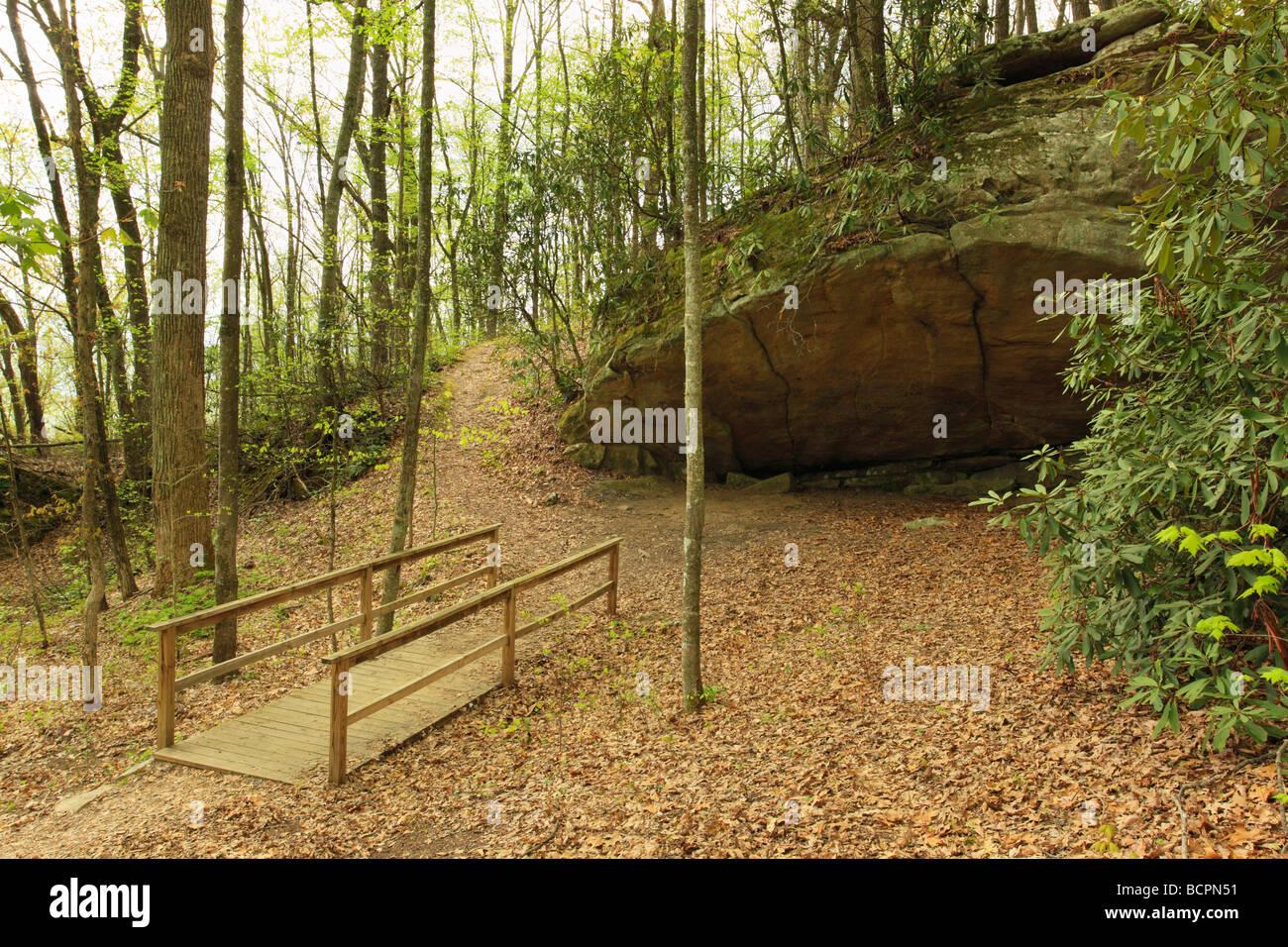 bridge on laurel cove trail pine mountain state resort park