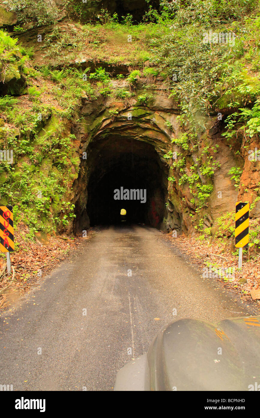 Nada Tunnel Red River Gorge Scenic Byway Red River Gorge Geological Area Slade Kentucky Stock Photo