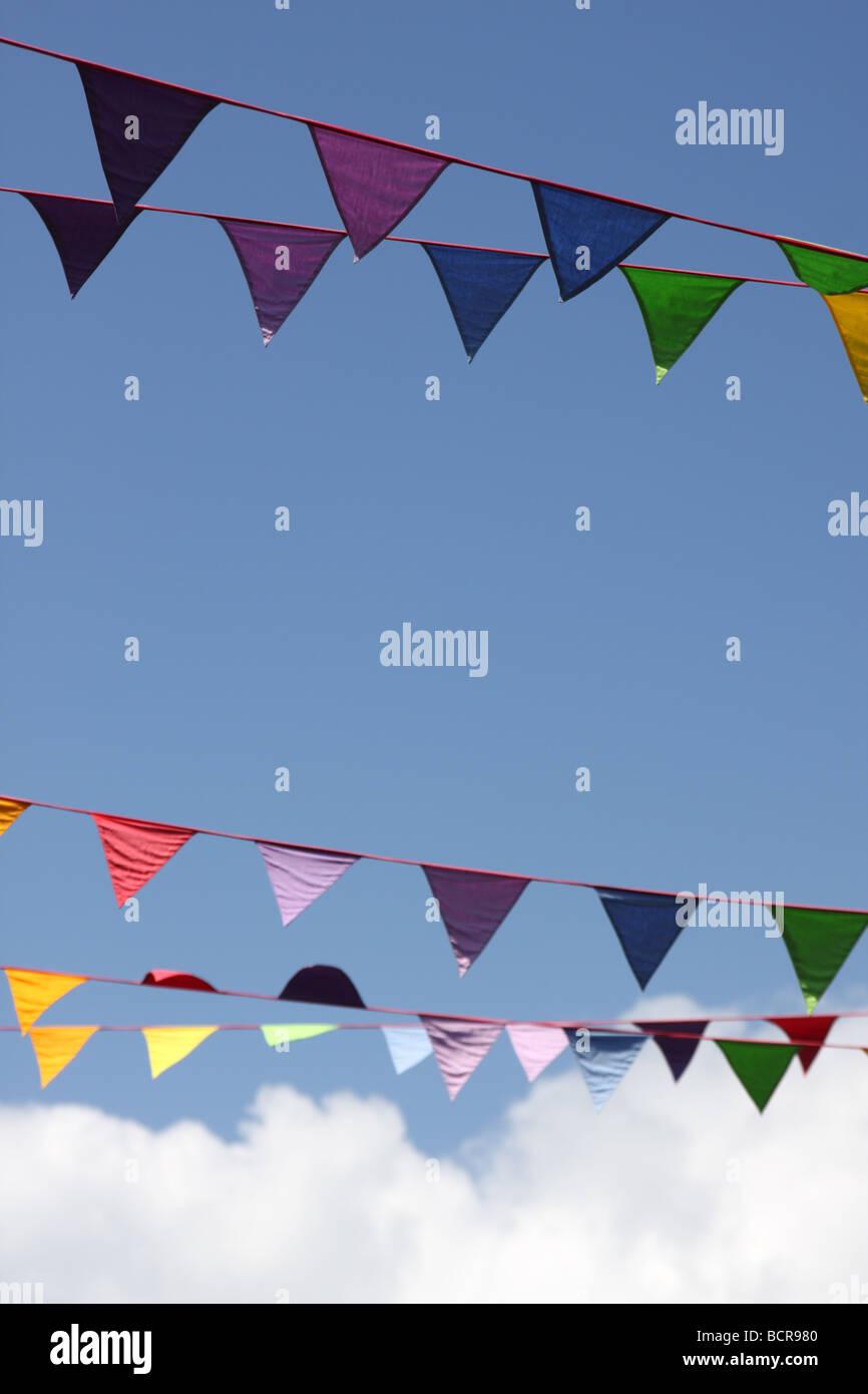 Flags, St Davids, Pembrokeshire, Wales, UK, 2009 - Stock Image