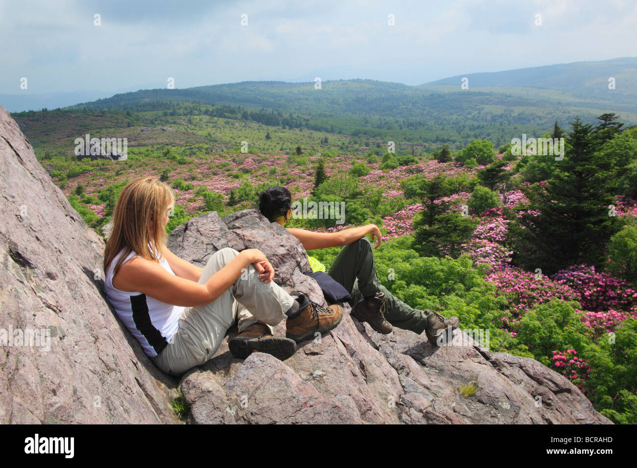 Appalachian Trail Hikers Rest in Rhododendron Gap Mount Rogers National Recreation Area Virginia - Stock Image