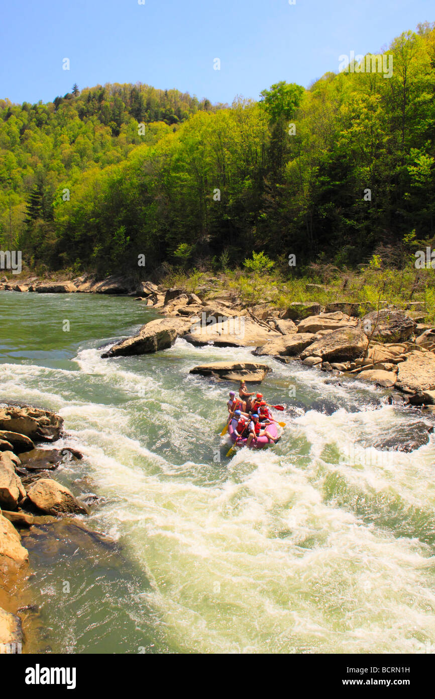 Rafters plunge through the O W Rapids Cumberland River Big South Fork National River and Recreation Area Oneida - Stock Image