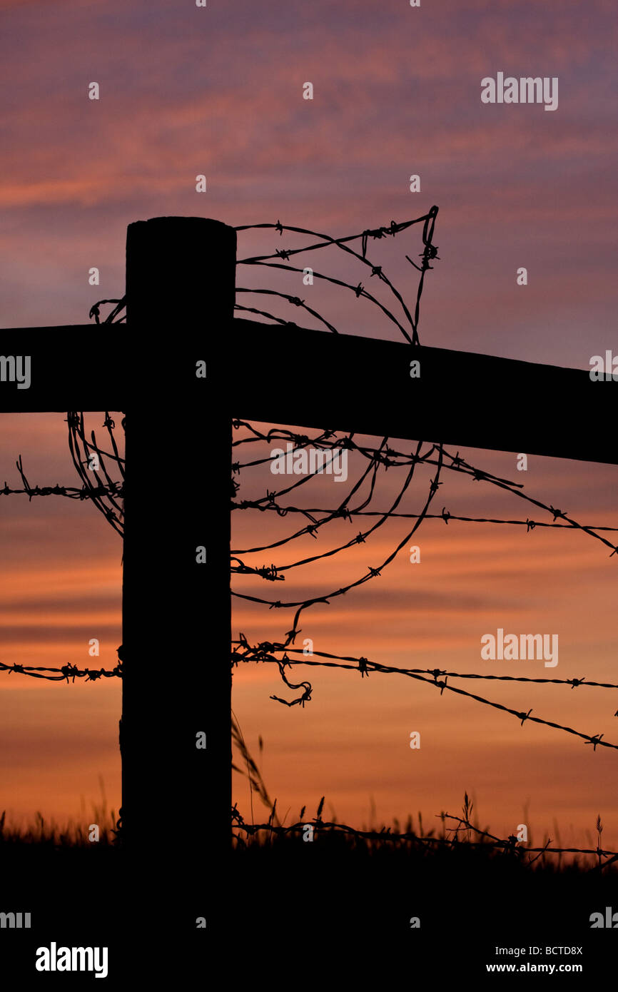 The silhouette of a fencepost and barbed wire against a prairie sunset - Stock Image
