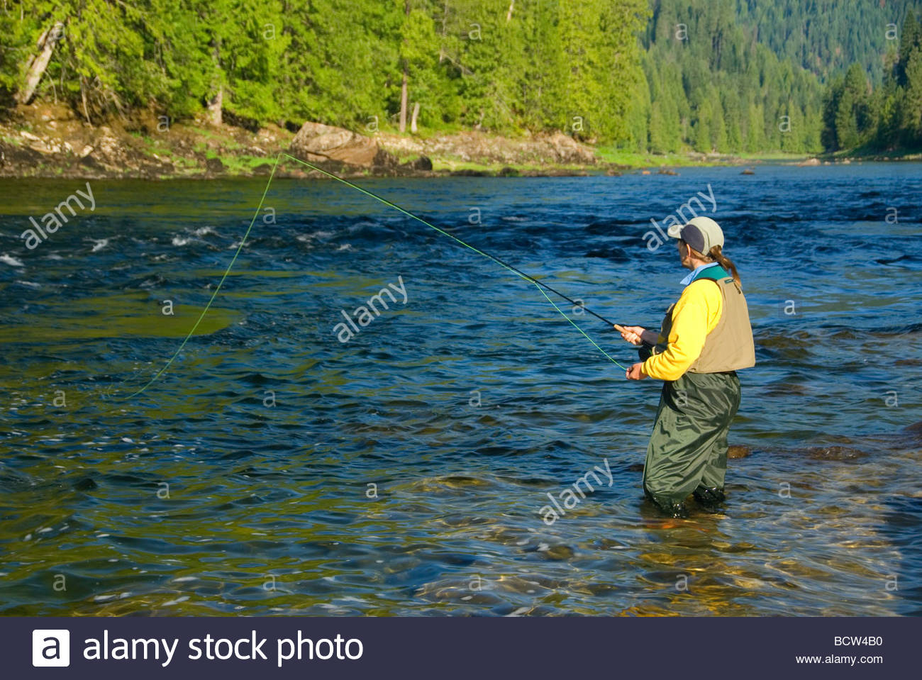 Woman fishing in river Middle Fork Clearwater Wild Scenic River Clearwater National Forest Northwest Passage Scenic - Stock Image