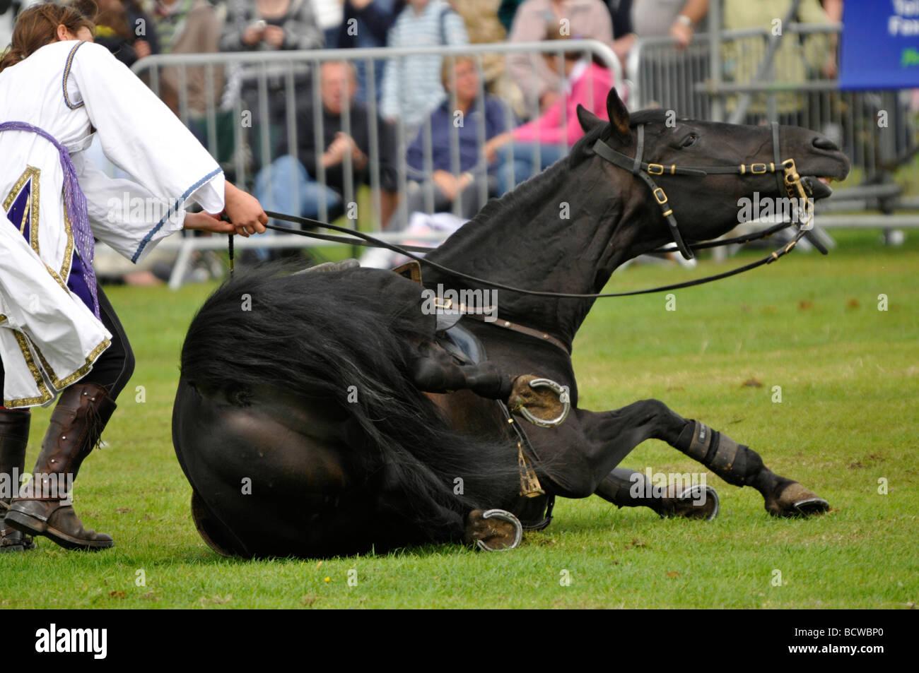 Horse riding display Cromer Carnival East Anglia Norfolk England - Stock Image
