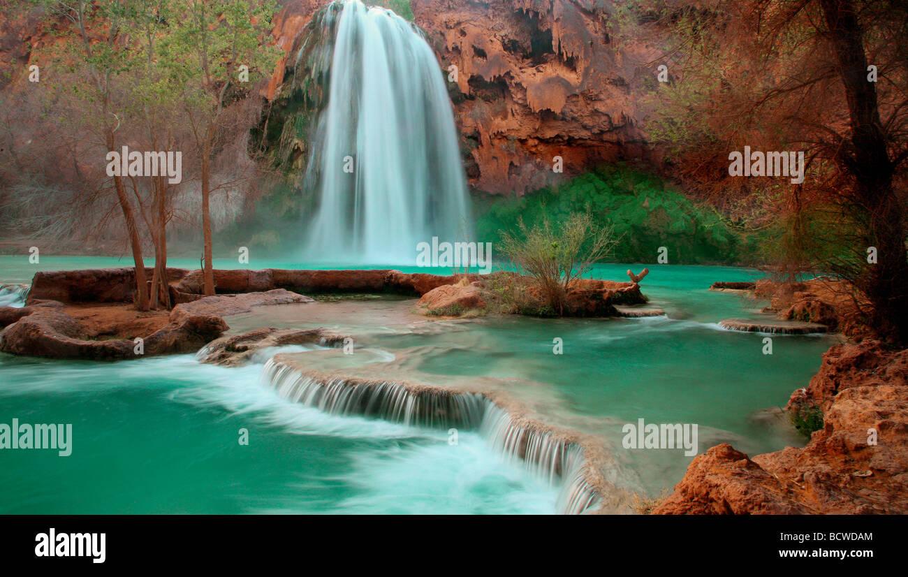 Waterfall in a forest, Havasu Falls, Havasupai Indian Reservation, Grand Canyon, Arizona, USA - Stock Image